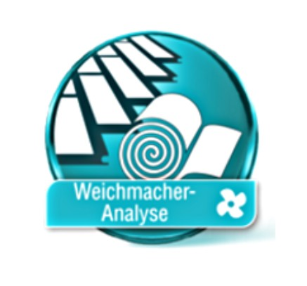 Weichmacher Analyse
