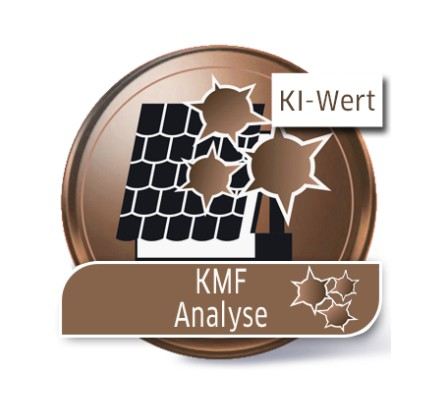 KMF-Analyse