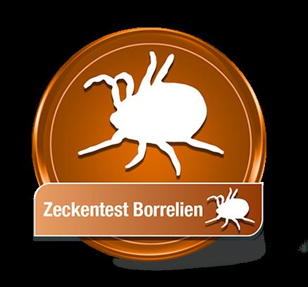 Zeckentest Borrelien